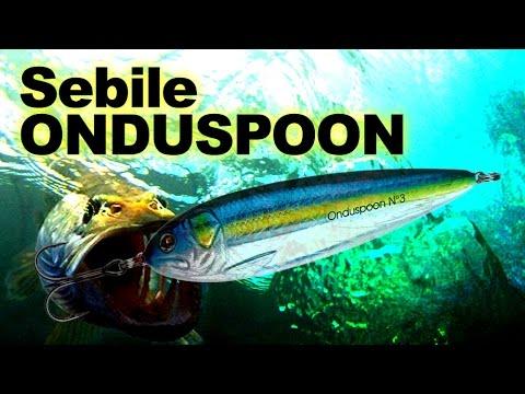 Sebile Onduspoon 65 videó