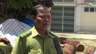 Hạt kiểm lâm huyện Đắk Hà (Kon Tum): Nỗ lực tro...