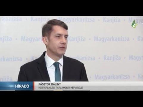 Köztársasági támogatás Magyarkanizsának-cover