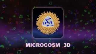 Science - Microcosm 3D YouTube video