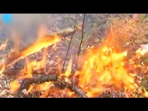 Смотреть онлайн: Остановить пожары в Бурятии пока не удается