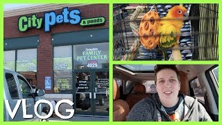 CHECKING OUT A NEW PET STORE by Pickles12807