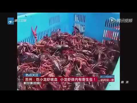 小龍蝦放超聲波機「震出寄生蟲」 你真的有種吃?