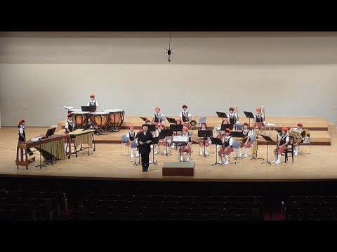 華城小学校 (21名)  平成29年度 サマーコンサート