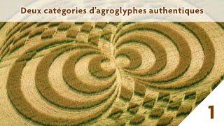 Mieux comprendre les crop circles