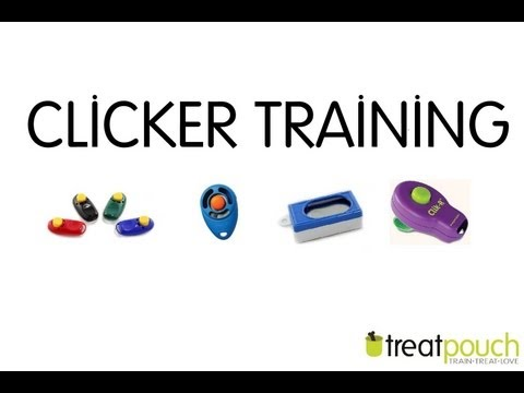 Introduction to Dog Training / Clicker Training
