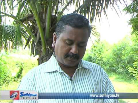 Pasumai Neram – Erral valarpu (Prawn farming)