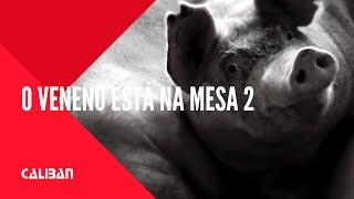 Após impactar o Brasil mostrando as perversas consequências do uso de agrotóxicos em O Veneno está na Mesa, o diretor Sílvio Tendler apresenta no segundo fil...