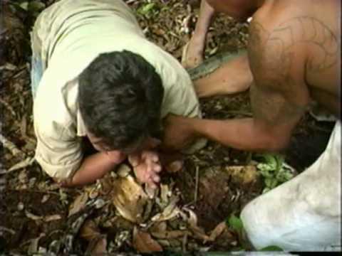 Anaconda ataca a un reportero