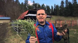 ChefConf 2015: DevOps Explained - No Horse Manure