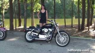 8. Used 2005 Harley Davidson Sportster 883 Custom Motorcycles for sale