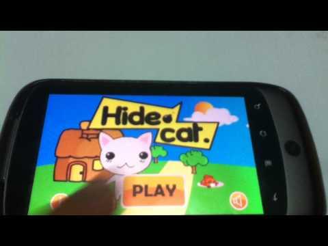 Video of Hide cat