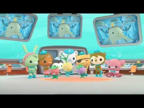 Octonauts: Ready For Action. Creature Report - Narwhal