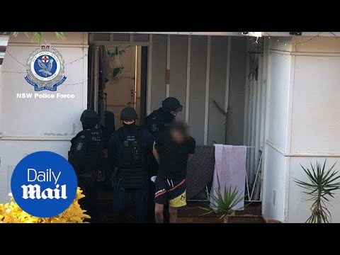 Four Finks bikie gang members arrested by Strike Force Raptor