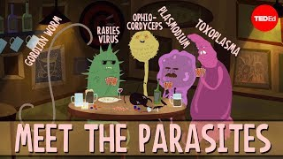 How parasites change their host's behavior - Jaap de Roode