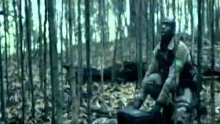 Video IQ Opice - Cvičený opice