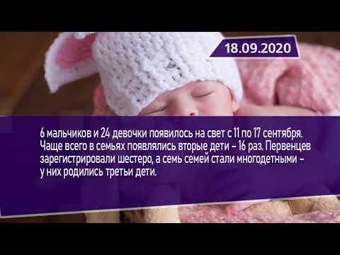 Новостная лента Телеканала Интекс 18.09.20.