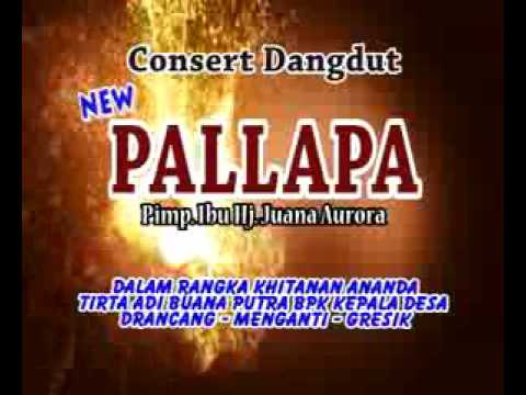 Download Video Palapa Srigala Berbulu Domba
