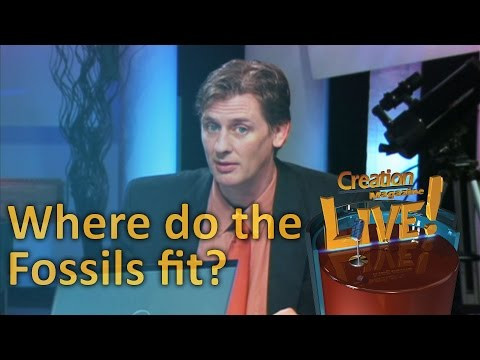 Where do the fossils fit? — Creation Magazine LIVE! (2-11)