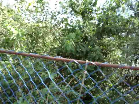Ponte Pencil em Apiuna SC...