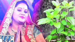 तुलसी माता भजन जरूर सुने - Hola Tulshi Pujanwa - Bhakti Bhajan - Anu Dubey - Tulshi Mata Bhajan