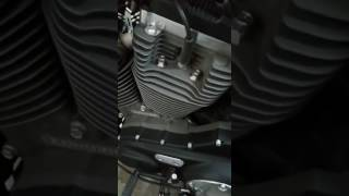 10. Harley Roadster Engine Thump !
