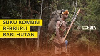 Download Video Suku Kombai Berburu Babi Hutan MP3 3GP MP4