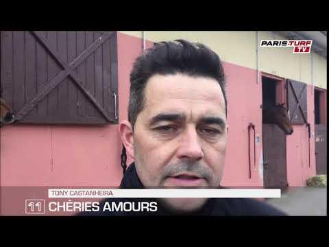 Quinté mercredi 17/01 : «Chéries Amours (n°11) a la pointure»