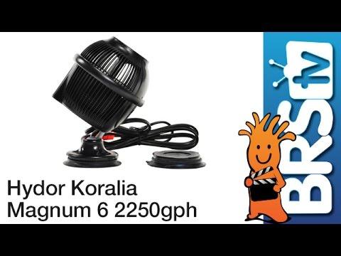 Hydor Koralia Magnum 6 – 2250GPH Flow Dynamics