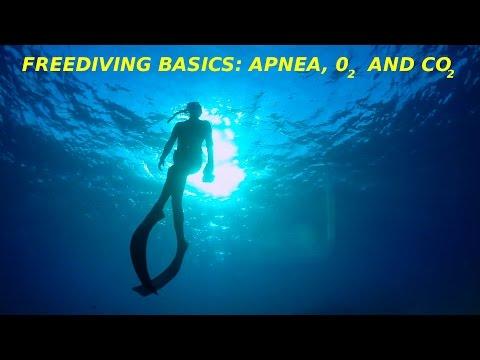 #12 Basics for a safe and happy Apnea