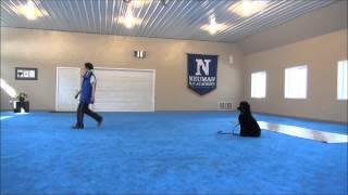 Ena (Poodle) Dog Training With Mandarin Dog Commands
