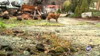 Video 60 λεπτά Ελλάδα Σαμοθράκη MP3, 3GP, MP4, WEBM, AVI, FLV November 2017