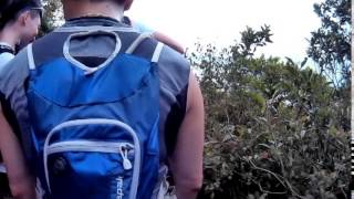 Video 2014 - MSIG HK50 Series - Hong Kong Island (SJCAM MP3, 3GP, MP4, WEBM, AVI, FLV November 2018