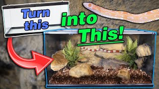 Introducing the Snake Discovery Decor Kit!! by Snake Discovery