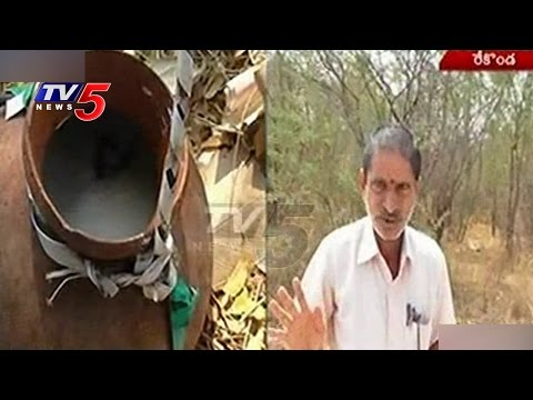 Hostel Warden Caught Redhanded | Warden Left Hostel   Boozing Toddy | Karimnagar | TV5 News 14 February 2016 07 51 PM