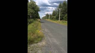 10. CRF 70f 2005 Top Speed on road