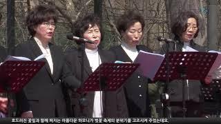 강남 TICKET BOOK_제 4회양재천 벚꽃축제