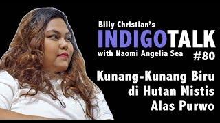 Video Hutan Mistis Alas Purwo IndigoTalk #80 Naomi Angelia & Billy Christian MP3, 3GP, MP4, WEBM, AVI, FLV Maret 2019