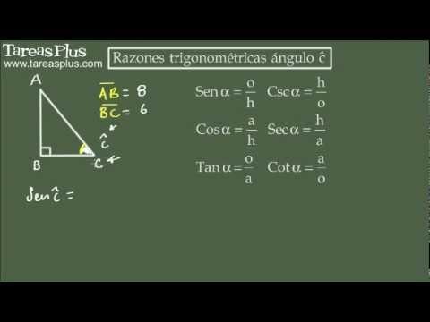 Trigonometrische Funktionen in einem rechtwinkligen Dreieck