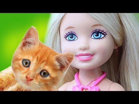 Салон красоты для кошек и собак.  Видео с куклами для девочек.
