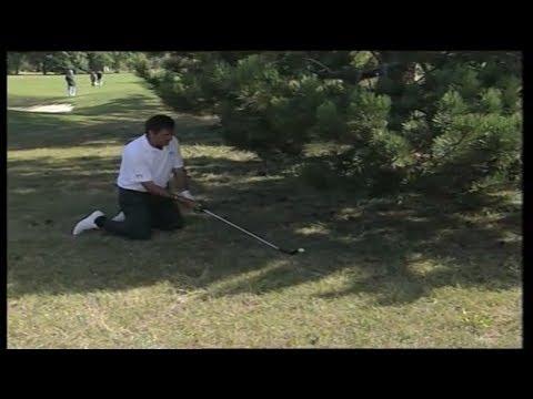 Fantastic Golf Shot