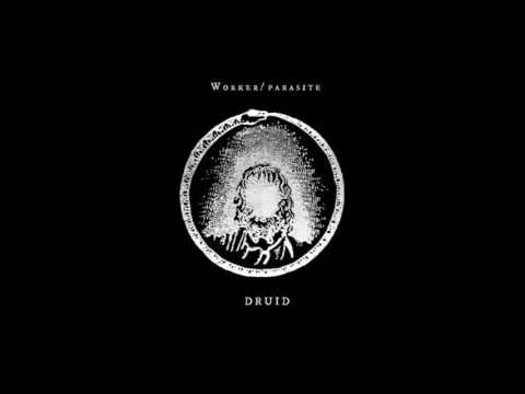 Worker Parasite - Druid [ELP001V]