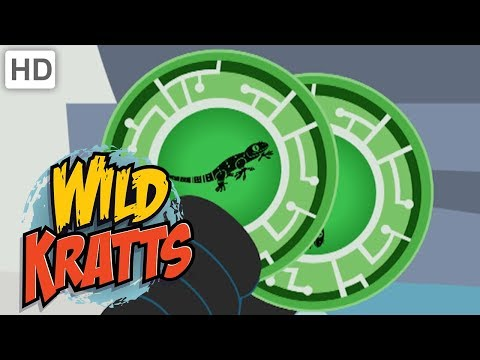 Wild Kratts 🦎 Activate Reptile Creature Power!