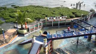 Borongan Philippines  city images : Pirates Cove Beach & Surf Resort Borongan E. Samar Philippines