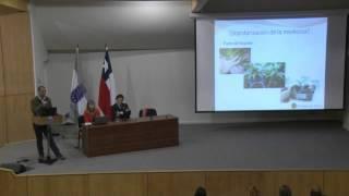 FORO Uso terapéutico de la Cannabis en Chile - Expone Pablo Meléndez - Universidad del Bio Bio