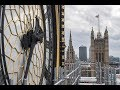 Behind the scenes   Big Ben renovation