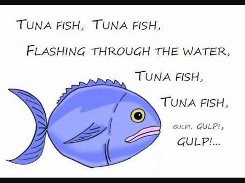Slippery Fish.wmv Chords - Chordify