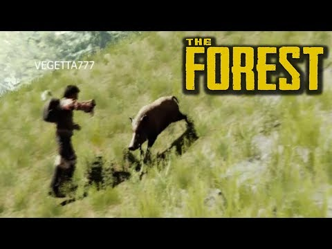 NOS ATACAN UNOS JABALÍES SALVAJES! The Forest #14