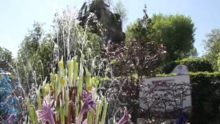 #709 Chelsea Flower Show 2012 - Britischer Baumhumor