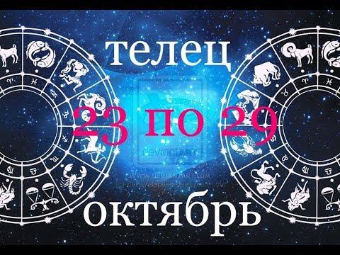ТЕЛЬЦЫ. Прогноз с 23 по 29 ОКТЯБРЯ 17г. ПО ДЕКАДАМ - DomaVideo.Ru
